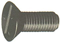 Flat Head Slotted Cap Screws